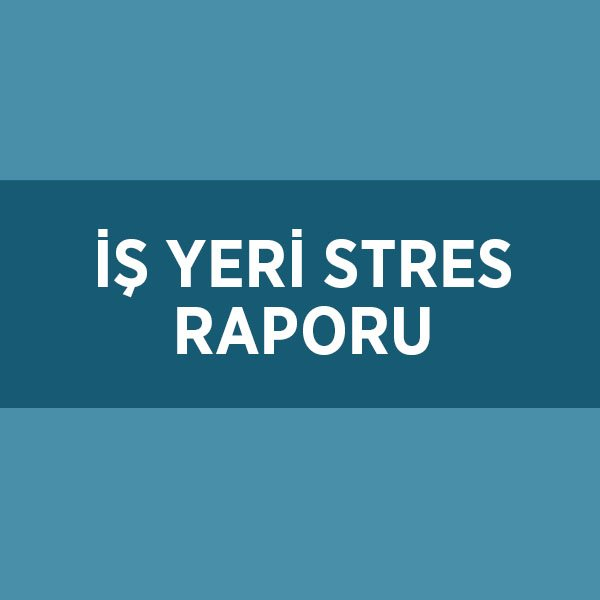 İŞ YERİ STRES RAPORU