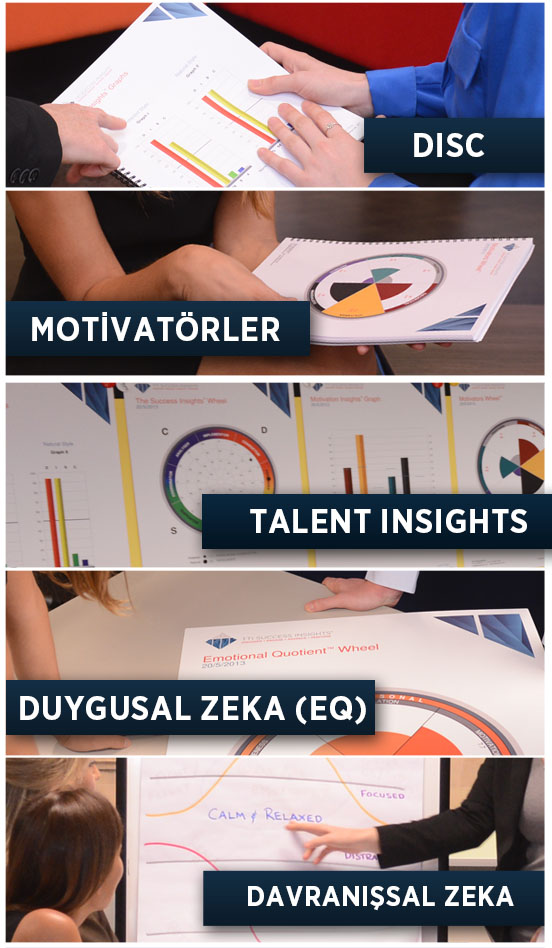 DISC_MOTIVATOR_TALENT INSIGHTS_EQ_BEHAVIOURAL INTELLIGENCE_TR